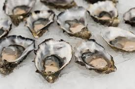 oyster benefits and side effects